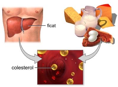 colesterolul-2