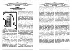 silvia-dascalescu_relief-educativ